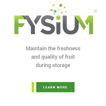 Fysium